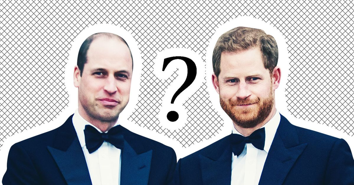 So, Are Prince Harry and Prince William Fighting or What?