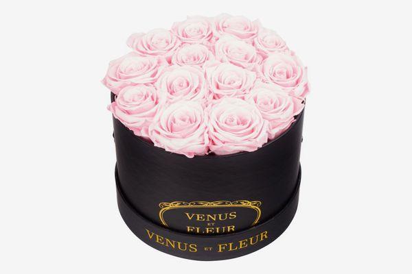 Venus Et Fleur Small Round Eternity Roses