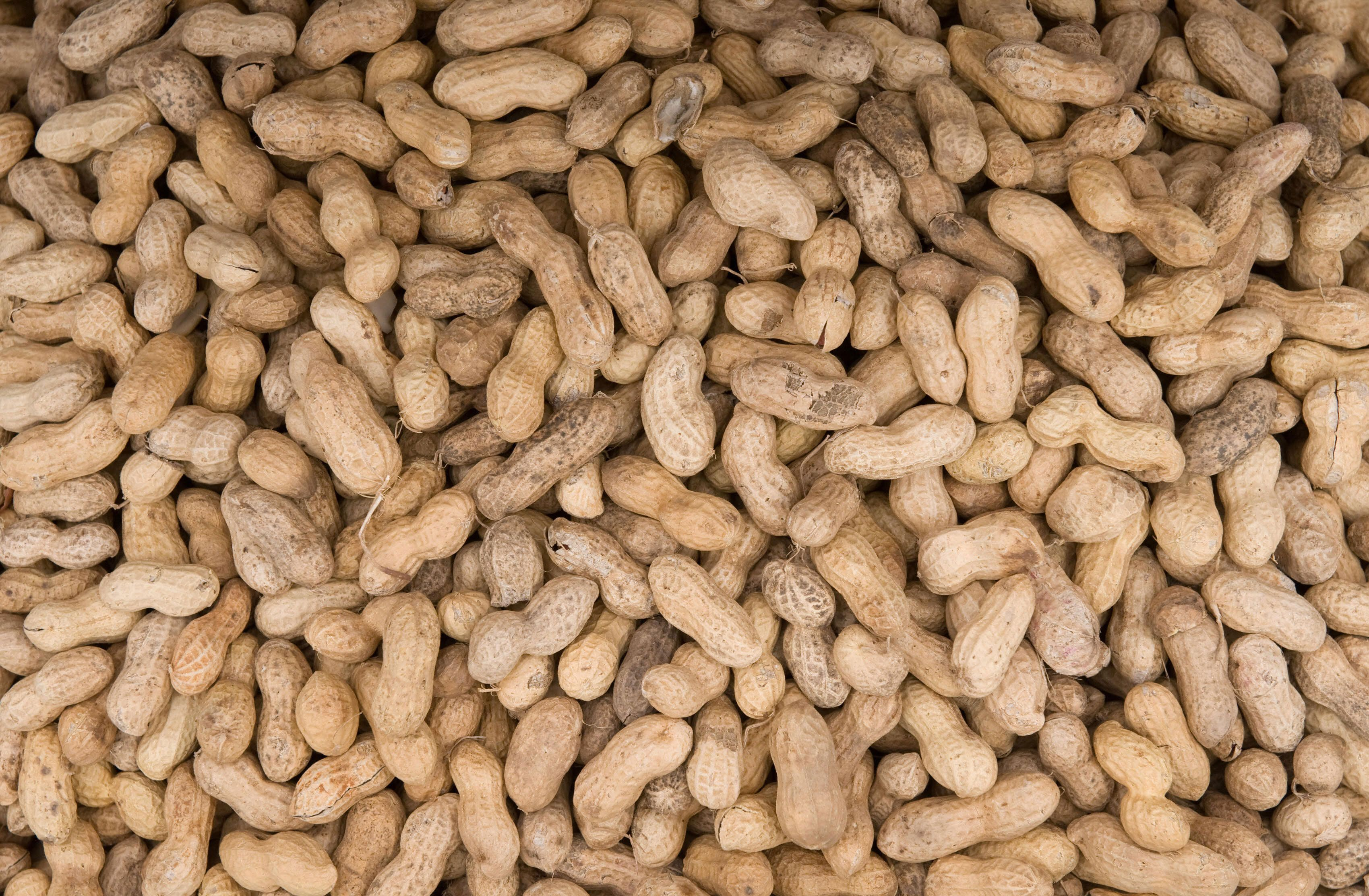 Peanuts are offered for sale at Eastern