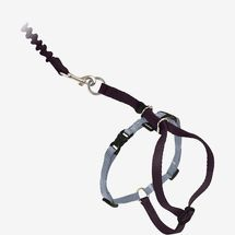 PetSafe Come With Me Kitty Nylon Cat Harness & Leash