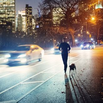Running in Central Park New York