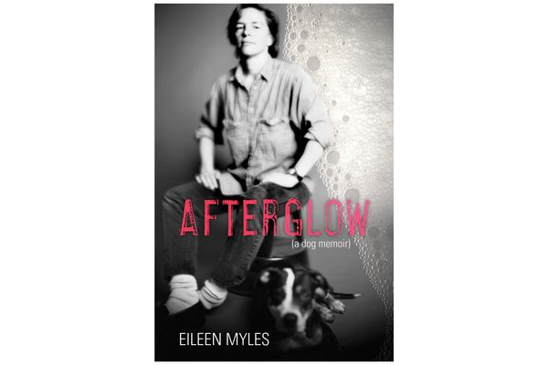 Afterglow (a dog memoir) by Eileen Myles