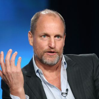PASADENA, CA - JANUARY 09: Actor Woody Harrelson speaks onstage during the 'True Detective' panel discussion at the HBO portion of the 2014 Winter Television Critics Association tour at the Langham Hotel on January 9, 2014 in Pasadena, California. (Photo by Frederick M. Brown/Getty Images)