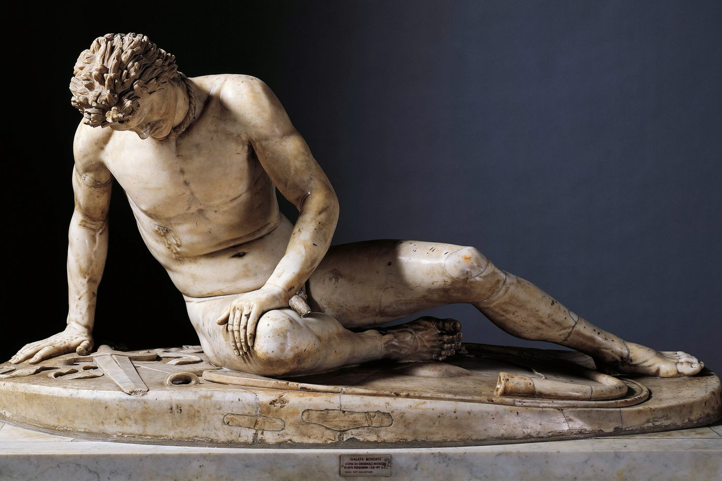 the dying gaul The dying gaul or dying trumpeter is an ancient roman marble copy of a lost ancient greek statue, thought to have been executed in bronze.