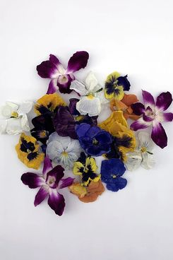 Freshly Preserved Freeze-Dried Edible Flowers