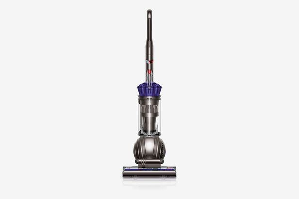 Dyson Ball Animal Upright Vacuum, Purple (Renewed)