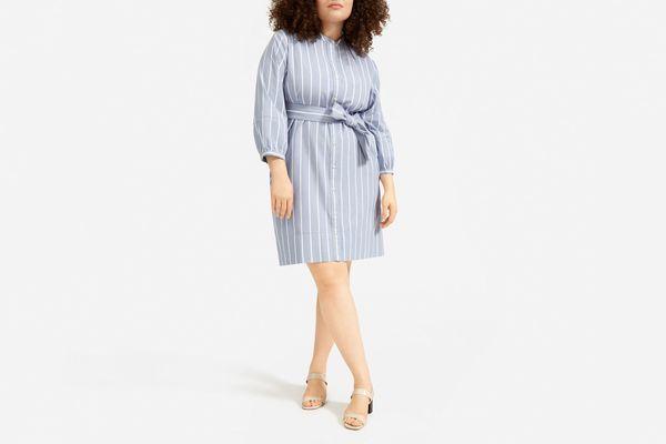 Everlane Cotton-Weave Collarless Shirtdress