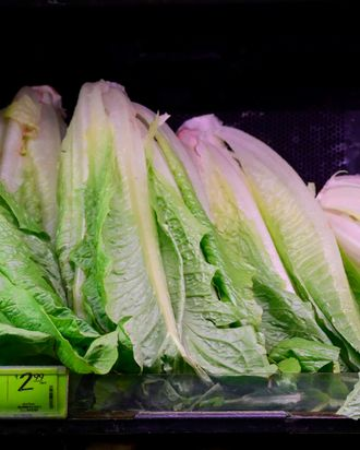 is romaine lettuce safe to eat now