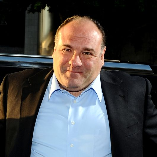 Actor James Gandolfini arrives at HBO's New Series 'Newsroom' Los Angeles Premiere at ArcLight Cinemas Cinerama Dome on June 20, 2012 in Hollywood, California.