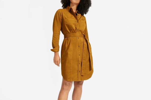 Everlane Modern Utility Shirtdress