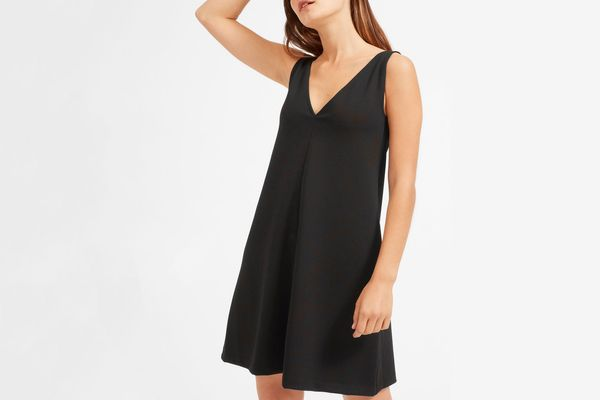 Everlane The Deep V-Neck A-Line Dress