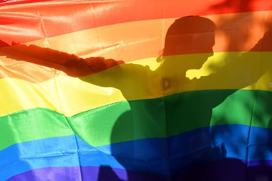 An activist's silhouette is seen through a rainbow flag during  a Gay Parade in Kiev on May 25, 2013. Around a hundred gay rights activists marched in Ukraine on Saturday despite fears of violence and a court ban, marking the first gay pride event in the ex-Soviet country, where homophobia is widespread and generally accepted.