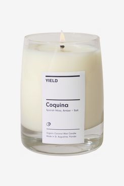 Yield Coquina Candle