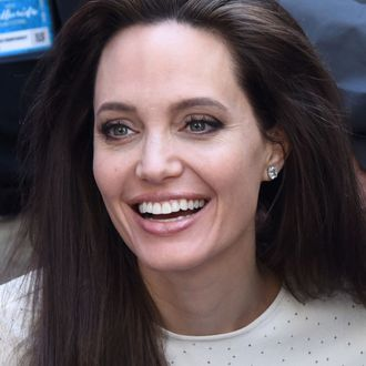 Angelina Jolie Gets A Standing Ovation At New Film Premiere