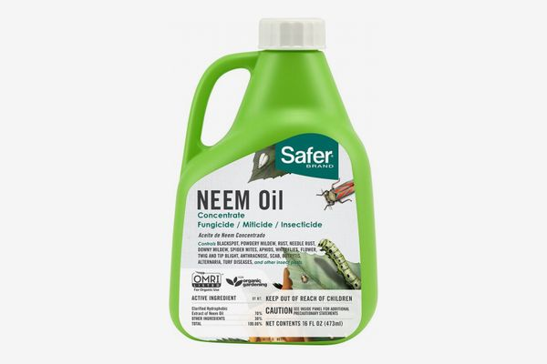 Safer Brand Neem Oil Concentrate
