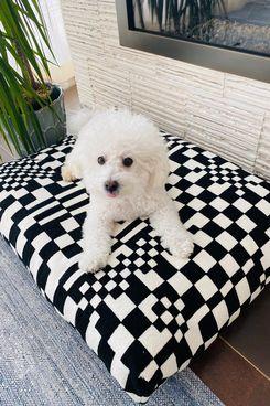 Dusen Dusen Check Dog Bed