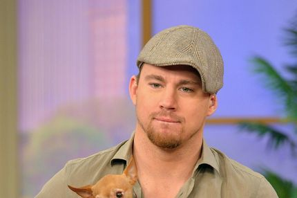 "MIAMI, FL - JUNE 24:  Channing Tatum appears On Univisions Despierta America to promote film ""White House Down"" at Univision Headquarters on June 24, 2013 in Miami, Florida.  (Photo by Gustavo Caballero/Getty Images)"
