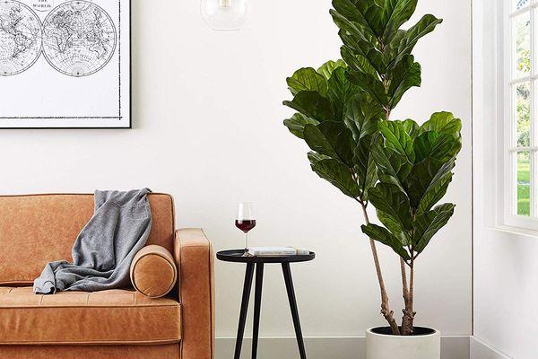 23 Best Artificial Plants 2020 The Strategist New York Magazine