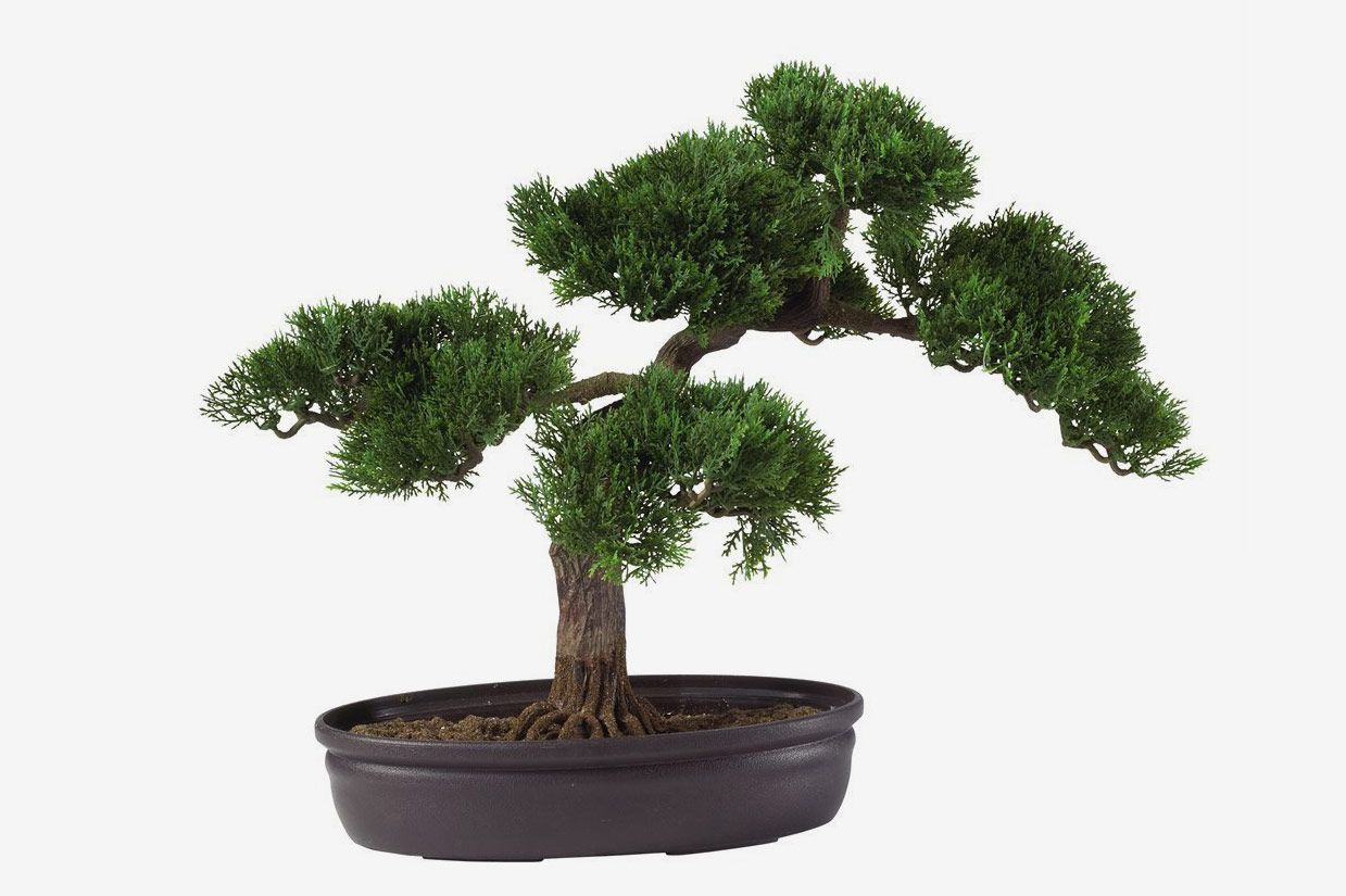 Nearly Natural Cedar Bonsai Decorative Silk Plant 16""