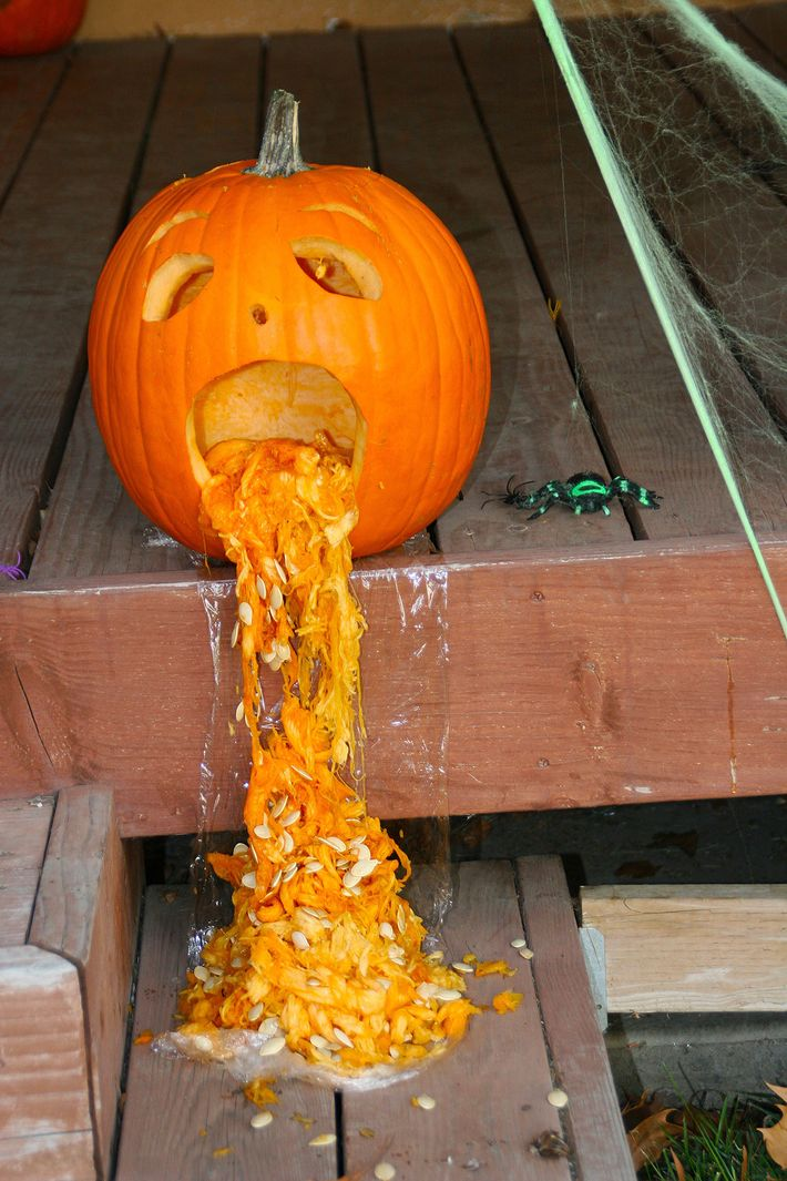 Reasons these pumpkins are puking