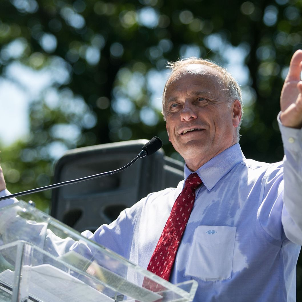 Rep. Steve King (R-IA) speaks during the DC March for Jobs in Upper Senate Park near Capitol Hill, on July 15, 2013 in Washington, DC. Conservative activists and supporters rallied against the Senate's immigration legislation and the impact illegal immigration has on reduced wages and employment opportunities for some Americans.