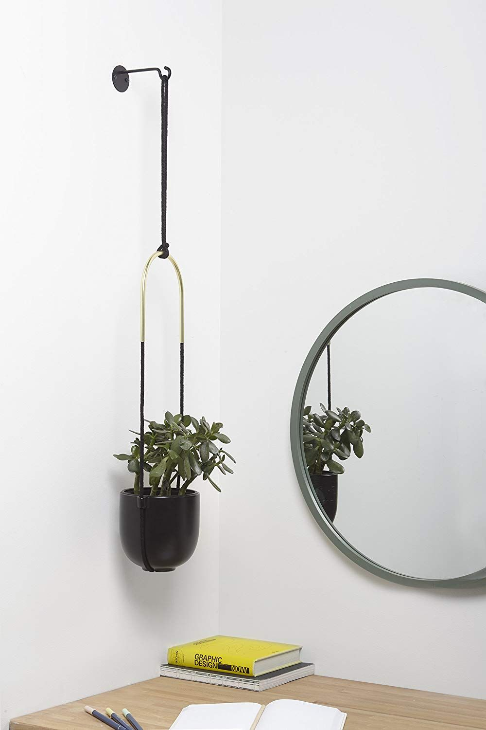Umbra Bolo Wall and Ceiling Planter