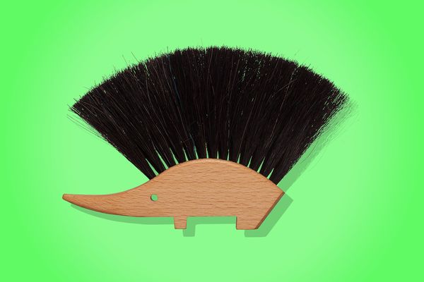 Best cleaning brush
