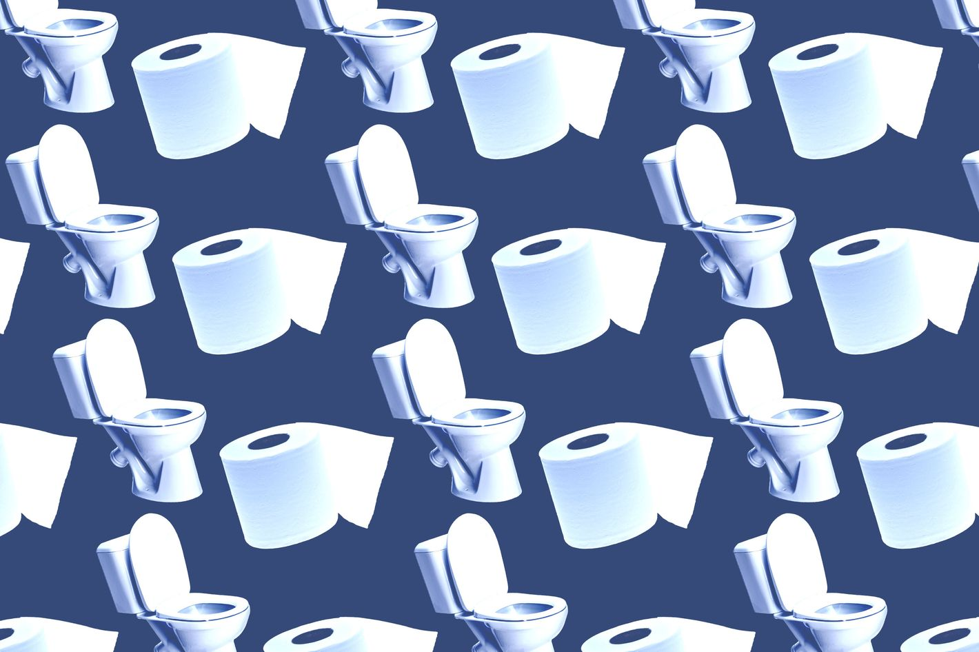 Everything We Know About Human Bathroom Behavior