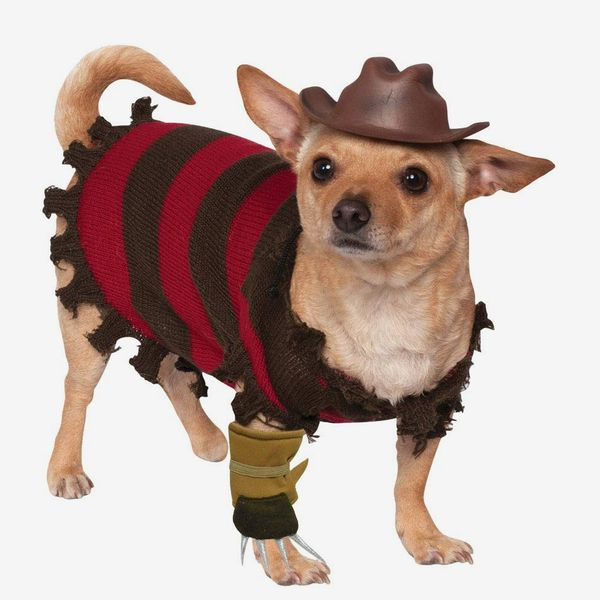 Freddy Krueger Halloween Dog Costume