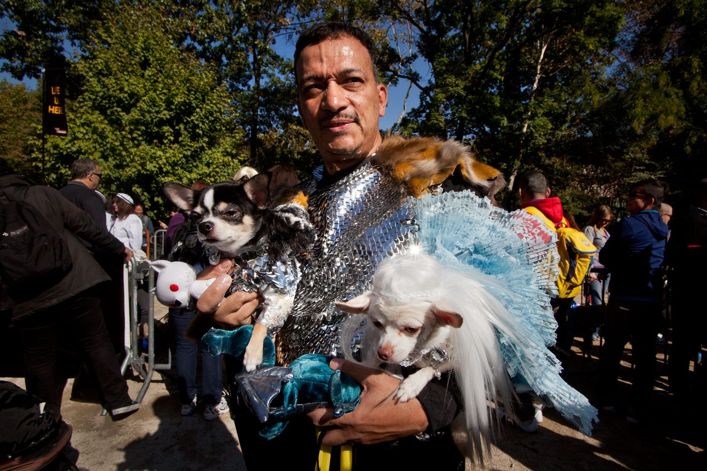 8a79a7770ba Here Are the Best Costumes From This Year s Halloween Dog Parade
