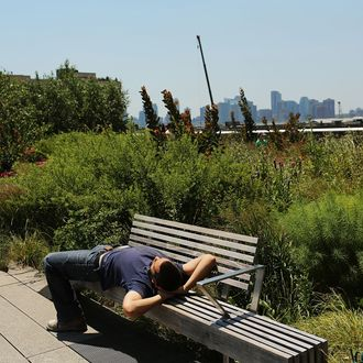 A man relaxes on a bench in the along the High Line park during warm weather on July 6, 2012 in New york City. Forecasts for tomorrow are predicting temperatures near 100 degrees Fahrenheit (38 Celsius) and may feel as hot as 106 because of humidity, according to the National weather Service. Much of the midwest of the United States has been experiencing a severe heat wave which has devastated crops and kept people indoors.