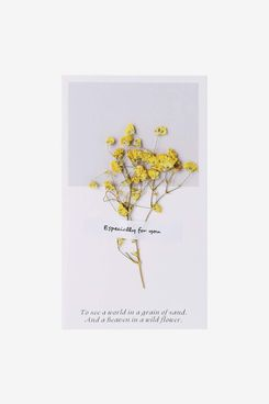 Younger Y Creative Dried Flowers Card