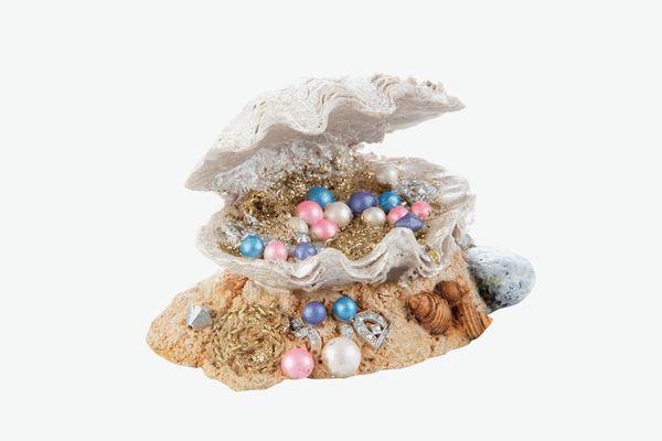 Top Fin Clamshell Treasure Aquarium Ornament