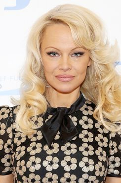 Porn Of Pamela Anderson