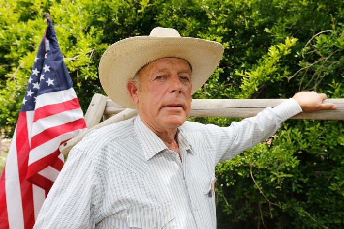 Nevada Rancher And Federal Gov't Face Off Over Land Use Battle
