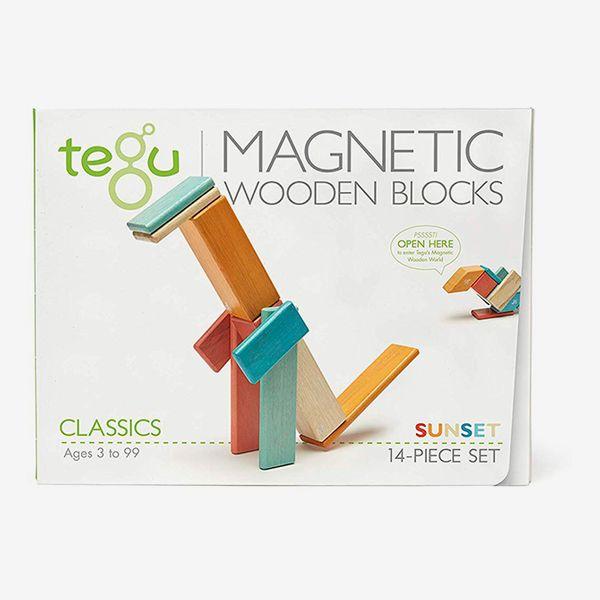 Tegu 14-Piece Magnetic Wooden Block Set