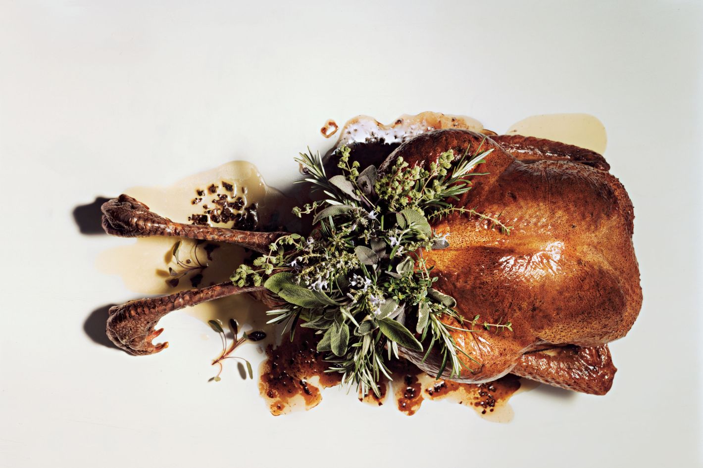 http://pixel.nymag.com/imgs/daily/grub/2012/11/03/03-holiday-foods-recipes.jpg