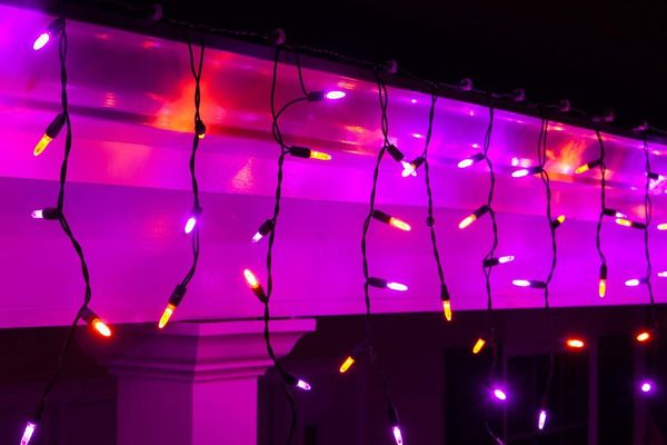 Wintergreen Lighting Purple and Orange LED String Lights (70 Icicle Lights)