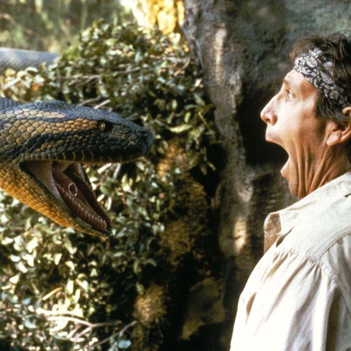Snake Film