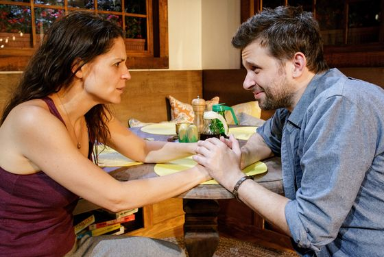 "Primary Stages production of ""Poor Behavior"" by Theresa Rebeck: directed by Evan Cabnet and featuring Heidi Armbruster, Brian Avers, Jeff Biehl, and Katie Kreisler at The Duke on 42nd St."