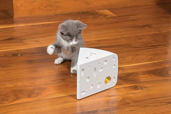 PetSafe Automatic Cheese Cat Toy