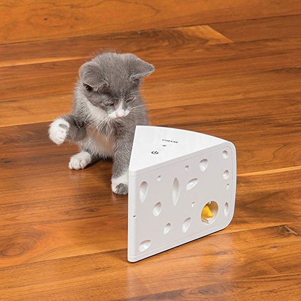 PetSafe Automatic Cheese Cat Toy Review 2018