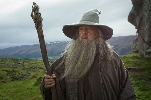 Ian McKellen Turned Down $1.5 Million To Officiate Wedding As Gandalf