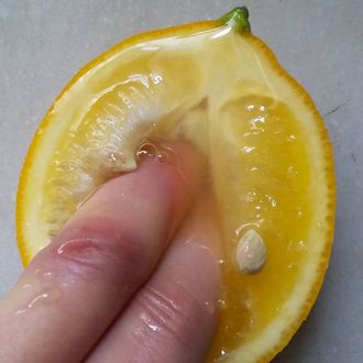 The First Time Artist Stephanie Sarley Gently Caressed A Halved Blood Orange Her Fingers Running Gently Down Its Center Before Plunging Into The Fleshly