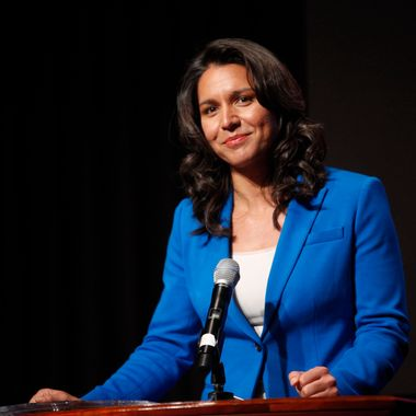 NEW YORK, NY - APRIL 22:  Tulsi Gabbard attends the 33rd Annual Women's Campaign Fund Parties of Your Choice Gala at Christie's Auction House on April 22, 2013 in New York City. (Photo by Thos Robinson/Getty Images for Women's Campaign Fund)
