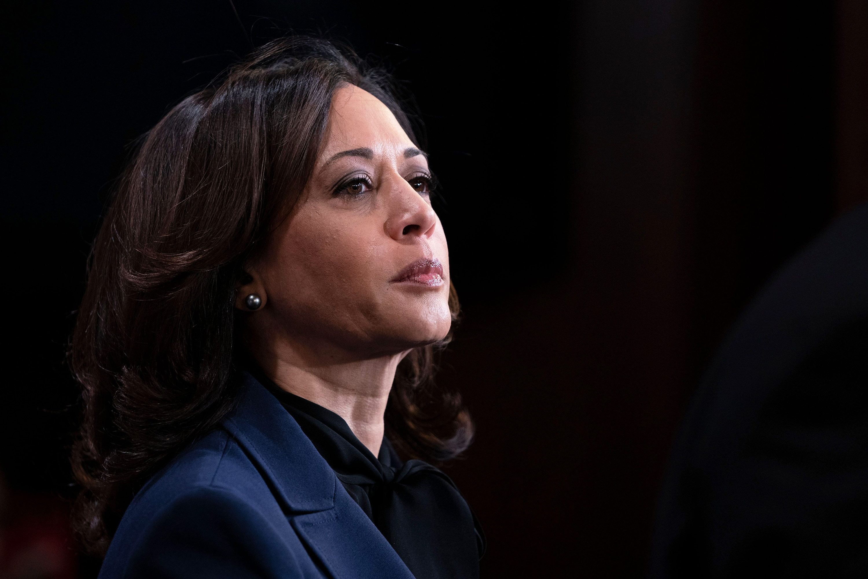 The Pros And Cons Of Kamala Harris As Joe Biden S Vp