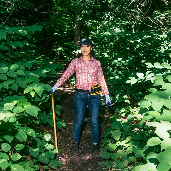 A woman standing in the middle of a forest clearing with tools in her hand and belt.