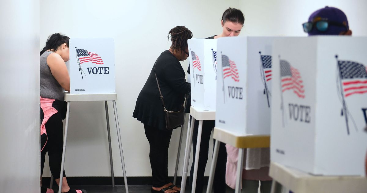 Strong Midterm Turnout Should Continue in 2020