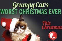 Lifetime to air grumpy cat christmas movie vulture the hollywood reporter writes that this christmas lifetime will air grumpy cats worst christmas ever thecheapjerseys Image collections