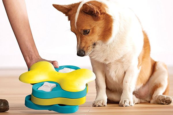 Nina Ottosson by Outward Hound Dog Tornado Interactive Dog Toy